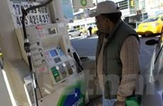 Niềm lạc quan từ Mỹ đẩy giá dầu châu Á lên cao