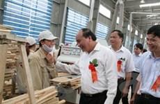 Khởi công xây dựng Nhà máy gỗ MDF tại Bắc Kạn