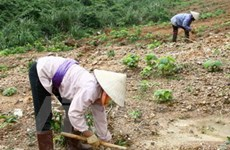 VN xếp hạng 85 về hiệu quả hoạt động môi trường