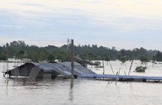 Lũ trên sông Cửu Long đã vượt mức đỉnh lịch sử