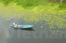 U Minh Thượng - Điểm đến cho người thích câu cá