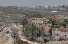 Palestine-Israel tiếp tục các cuộc gặp trong tháng 1