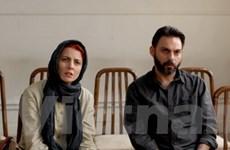 5 bộ phim tranh giải Oscar cho phim nước ngoài