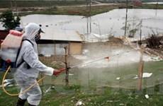 Bệnh nhân đầu tiên bị mắc cúm A/H5N1 tại Đắk Lắk