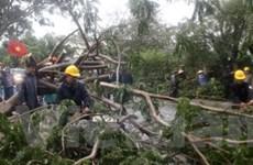 Trung tâm TP.HCM bị thiệt hại nặng sau bão số 1