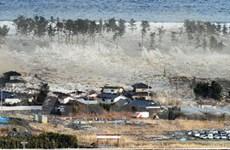 Nhật Bản chia sẻ kinh nghiệm từ thảm họa thiên tai