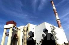 IAEA: Iran làm giàu urani với mức cao hơn dự kiến