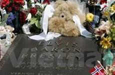 Người hâm mộ phản đối đấu giá hầm mộ của Elvis