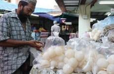 WWF-Malaysia kêu gọi không mua bán trứng rùa