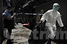 Đã có 9 người Palestine tử vong vì 'cúm lợn' H1N1