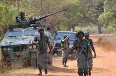 Lực lượng nổi dậy ở Trung Phi chấp thuận hòa đàm