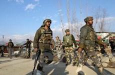"""Hòa bình Ấn Độ-Pakistan có nguy cơ """"chệch hướng"""""""