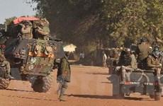 Ai Cập phản đối hành động can thiệp quân sự ở Mali