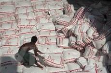 Thái Lan lại nâng mức trợ giá cho người trồng lúa