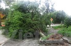Các địa phương tiếp tục ứng phó với lũ sau bão số 5
