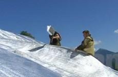 Nga tích trữ tuyết cho Olympic mùa Đông Sochi 2014
