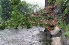 Lũ các sông Quảng Ngãi, Bình Định đang lên chậm