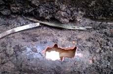 Tiến hành khai quật chất thải nguy hại tại Nicotex