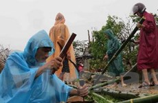 Khắc phục hậu quả lốc xoáy và lũ lụt tại Quảng Sơn