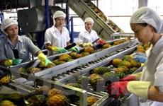 """Kinh tế Việt Nam cần đi trên cả hai """"chân"""""""