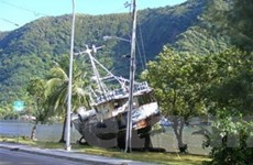 40 người chết vì sóng thần ở Thái Bình Dương