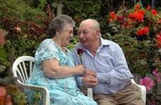 60 năm tặng hoa hồng cho vợ