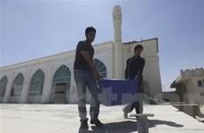 Gần 700 cáo buộc gian lận bầu cử ở Afghanistan