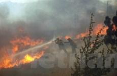 Cháy rừng ở California vẫn ngoài tầm kiểm soát