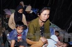 Động đất ở Indonesia làm ít nhất 42 người chết