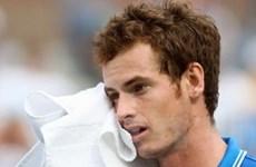 Andy Murray và giấc mơ Grand Slam tan vỡ