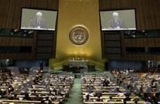 Bầu 5 thành viên mới của Hội đồng Bảo an