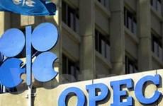 OPEC có thể tăng sản lượng vào tháng 12 tới