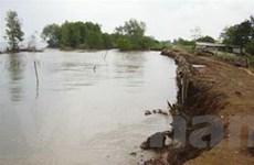 Đê biển ở Kiên Giang đang bị sạt lở nghiêm trọng