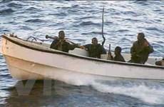 VN kêu gọi cộng đồng hợp tác chống cướp biển