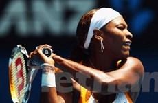 Serena nhẹ nhàng đi tiếp tại Australia Open 2010