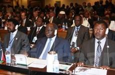 """AU nhất trí xem xét kế hoạch """"chia đất cho Haiti"""""""