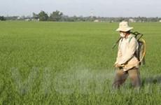 Nông nghiệp khẩn cấp phòng chống nắng nóng