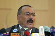 Tổng thống Yemen ra lệnh ngừng bắn từ 11/2