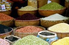 Tự do hóa thị trường cải thiện an ninh lương thực
