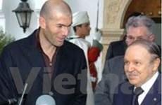 Zidane trở thành huấn luyện viên tuyển Algeria?