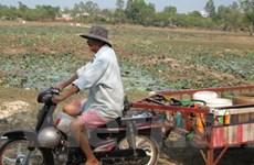 Hơn 20.000 hộ ở Bình Phước thiếu nước sinh hoạt