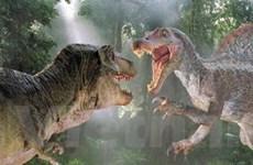 Biến đổi khí hậu làm khủng long tuyệt chủng