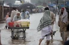 Lũ lụt ở Pakistan, Ấn Độ ngày càng nghiêm trọng
