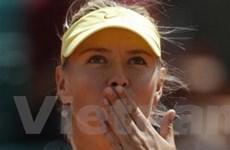 Maria Sharapova khởi đầu như mơ tại Roland Garros