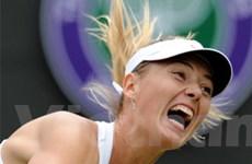 """Hạ Peng, """"búp bê Nga"""" hẹn Wozniacki tại tứ kết"""