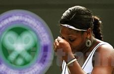 Đương kim vô địch dừng cuộc chơi tại Wimbledon