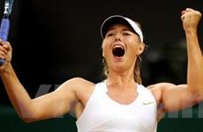 Sharapova vào bán kết