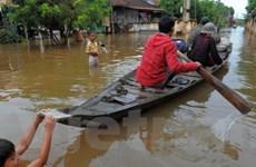 Hơn 12.000 gia đình Việt kiều bị ảnh hưởng do lũ lụt