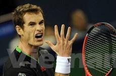 Andy Murray đã sẵn sàng vượt mặt Roger Federer