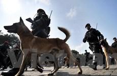 Triển khai hơn 11.000 cảnh sát tại SEA Games 26